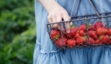 Bild Kind mit Erdbeeren im Korb